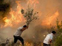 Manavgat/Antalya Orman Yangını Değerlendirme Raporu