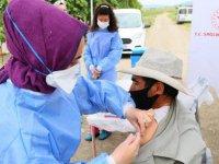 Bursa Karacabey Ovası'nda hasat yapan işçilere Kovid-19 aşıları tarlada yapıldı