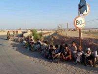 Afganistan'da son 3 ayda şiddet nedeniyle 950 binden fazla kişi evlerinden oldu