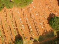 Senegal'de Kovid-19 kaynaklı ölümler nedeniyle mezarlıklar dolmak üzere