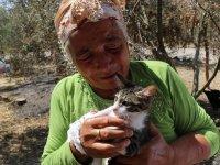 Orman yangınından son anda kurtulan yaşlı çift, tedavi edilen kedilerine kavuştu