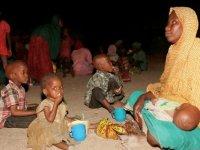 BM: Nijerya'nın kuzeydoğusunda 8,7 milyon kişi acil insani yardıma muhtaç