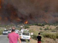 Aydın Valisi Aksoy, Çine'de orman yangınının sürdüğü bölgede incelemede bulundu: