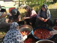 Edirne'de huzurevi sakinleri ektikleri domateslerin hasadını gerçekleştirip kışlık salçalarını yaptılar