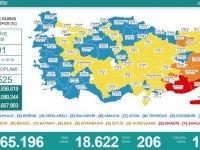 Türkiye'de 18 bin 622 kişinin Kovid-19 testi pozitif çıktı, 206 kişi hayatını kaybetti