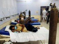 Bangladeş'te dang hummasıyla mücadele devam ediyor