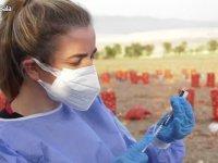 Bakan Koca, ekiplerin Kovid-19'a karşı soğan tarlalarındaki aşılama çalışmalarını paylaştı