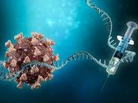 Kovid-19 aşılamanın yetersiz olduğu ülkelerde endemik hastalığa dönüşebilir