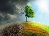İklim şokları ve salgınlar gıda sisteminin yeniden tasarlanmasını gerektiriyor