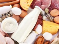 Hayvansal ürünlerde gıda sağlığını olumsuz etkileyen noktalara dikkat