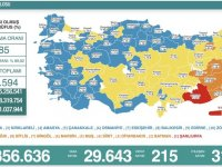 Türkiye'de 29 bin 643 kişinin Kovid-19 testi pozitif çıktı, 215 kişi hayatını kaybetti