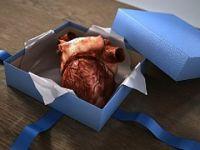 Organ üretecek 3 boyutlu yazıcı