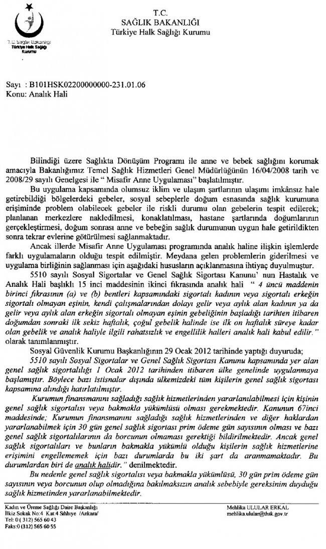 analik-hali-2.jpg