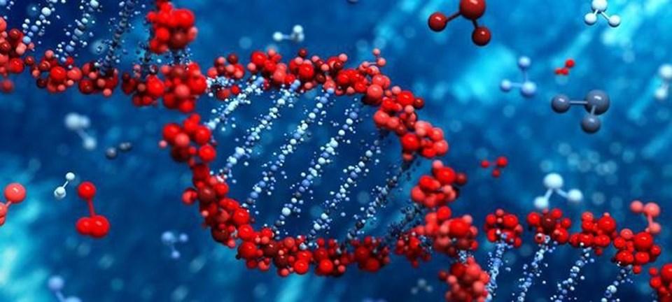genetik.jpg