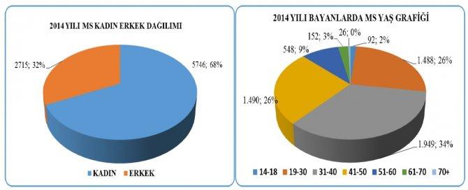 ms-istatistik1.jpg