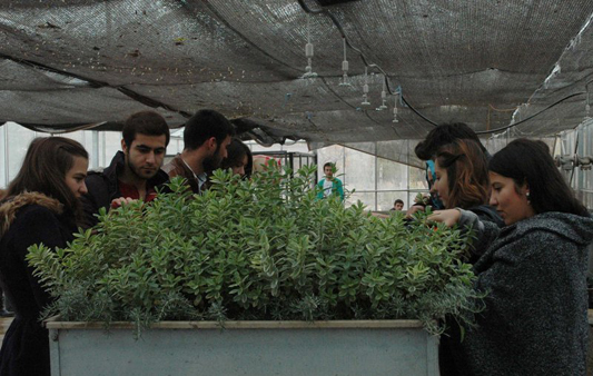 universite-kendi-bitkisini-uretiyor-4.jpg