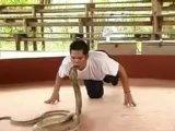 Kobra ve terbiyecisi